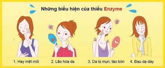 Enzyme đóng vai trò vô cùng quan trọng đối với cơ thể