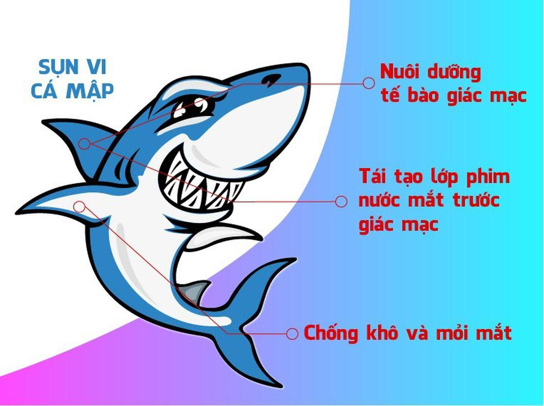 Tại sao nên sử dụng sụn cá mập Úc?